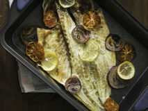 Cooked sea bass with lemon, onion and tomato ready Stock Images