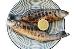 Cooked seabass Stock Photos