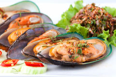 Cooked shellfish with spicy salad. Close up of cooked shellfish with spicy salad on white plate Royalty Free Stock Photography