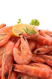 Cooked shrimp Royalty Free Stock Images