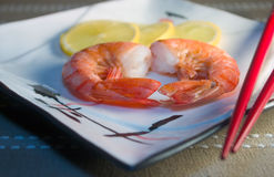 Cooked Shrimp. On a White Plate Royalty Free Stock Image