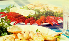 Cooked shrimp and crayfish on plate close up Royalty Free Stock Photography