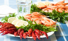 Cooked shrimp and crayfish on plate close up Royalty Free Stock Images