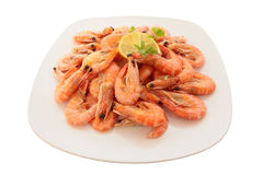 Cooked shrimp on a large plate. Royalty Free Stock Photography