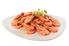 Cooked shrimp on a large plate. Royalty Free Stock Images