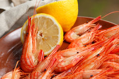 Cooked shrimp and lemon. Bright orangey red cooked shrimp and halved lemon for a healthy vegetarian meal or refreshment Stock Image