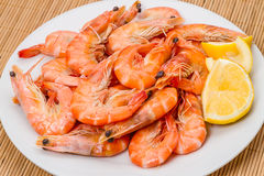 Cooked shrimp with lemon Royalty Free Stock Photo