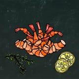 Cooked Shrimp or Prawn Cocktail, Herbs and Lemon.  On Chalkboard Background Doodle Cartoon Vintage Hand Drawn Stock Image