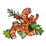 Cooked Shrimp or Prawn Cocktail, Herbs and Lemon. Isolated On a White Background Doodle Cartoon Vintage Hand Drawn Stock Photos