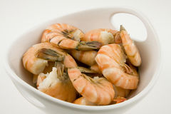 Cooked Shrimps. In white bowl Royalty Free Stock Image