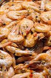 Cooked Shrimps Royalty Free Stock Photos