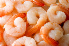 Cooked shrimps Royalty Free Stock Images
