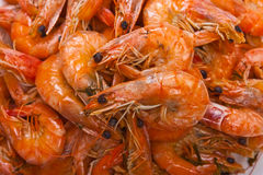 Cooked shrimps background. Cooked shrimps - healthy seafood background Stock Photography