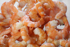 Cooked shrimps close up Royalty Free Stock Photo