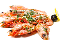 Cooked shrimps with greens Royalty Free Stock Photos