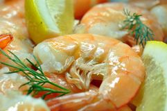 Cooked tiger shrimps. Royalty Free Stock Photo