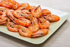 Cooked shrimps on plate. Cooked shrimps on green plate Stock Photography