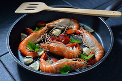Cooked shrimps,prawns Royalty Free Stock Image