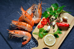 Cooked shrimps,prawns Royalty Free Stock Photo
