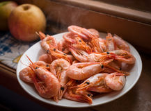 Cooked shrimps. Stock Images