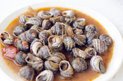 Cooked snails Stock Images