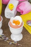 Cooked sof tboiled eggs Royalty Free Stock Images