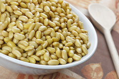 Cooked soybeans Stock Image