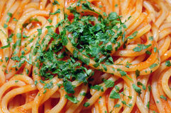 Cooked spaghetti with parsley Royalty Free Stock Photo