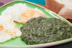 Cooked spinach and fried eggs served on a plate Royalty Free Stock Photography