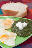 Cooked spinach and fried eggs served on a plate Stock Images