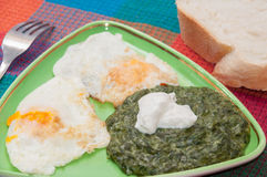 Cooked spinach and fried eggs served on a plate Royalty Free Stock Image