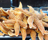 Cooked starfish Royalty Free Stock Photo