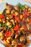 Cooked stir fry vegetables-Healthy concept. royalty free stock images