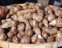 Cooked Taro Root Royalty Free Stock Image