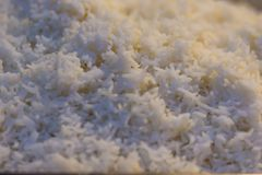 Cooked thai jasmine rice background. Jasmine rice or Khao hom mali also known as aromatic rice that grown primarily in Thailand T. Hai hom mali or Thai fragrant Royalty Free Stock Image