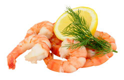 Cooked Tiger Prawns Royalty Free Stock Photography