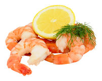 Cooked Tiger Prawns Royalty Free Stock Photo