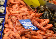 Cooked tiger prawns and mussels in market place Royalty Free Stock Photo