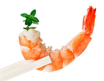 Cooked tiger shrimp with thyme twig in chopsticks Stock Images