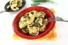 Cooked tortellini with sage butter Stock Photography