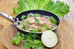 Cooked tuna. Cooked chunk light tuna with onion and  green lectuce Royalty Free Stock Photography