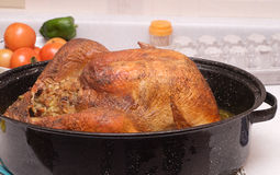 Cooked Turkey. A large cooked turkey sitting in a roaster, on a kitchen counter stock photo