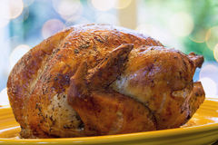 Cooked Turkey on Yellow Platter Closeup Royalty Free Stock Photography