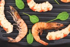 Cooked unshelled shrimp on frying pan. Royalty Free Stock Photo