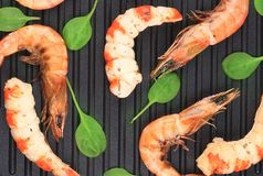 Cooked unshelled shrimp on frying pan. Royalty Free Stock Images