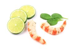 Cooked unshelled shrimps with basil. Stock Photos
