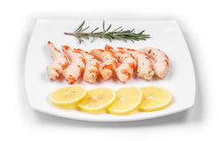 Cooked unshelled shrimps with lemon. Stock Image