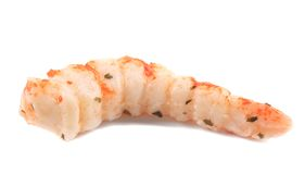 Cooked unshelled tiger shrimp. Stock Photography
