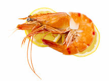 Cooked unshelled tiger shrimp Stock Photo