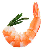 Cooked unshelled tiger shrimp with rosemary twig. Isolated on white Stock Photo